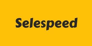 ремонт роботов Селеспид (selespeed)